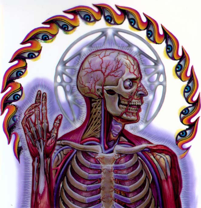 Tool Band Lateralus Eye | www.pixshark.com - Images ...